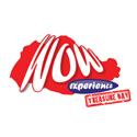 wow-logo-tb